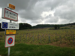 The Grand Cru village of Le Mesnil sur Oger