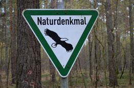 Naturdenkmal_HLinne_DSC_0076.jpg