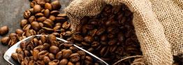 botanic comprar café de especialidad en grano o molido en Valencia. cafés de origen para cafetera superautomática como Etiopía, Colombia, Guatemala, Costa Rica, Kenia, Brasil, Perú, café natural tostado artesanal, 100% arábica