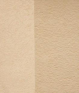 geschützte Putzfassade ( Farbe nach Wunsch - alle Farbtöne möglich )