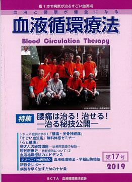 19th Annual Bulletin No. 17