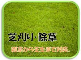 芝刈り 除草 草刈り 草取り
