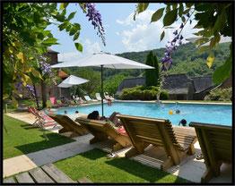 La piscine 6 X 12 mètres, dans un espace vert et belle vue