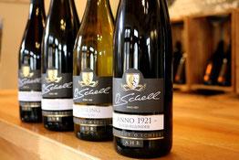 Weinprobe Weingut O. Schell Ahr Rech