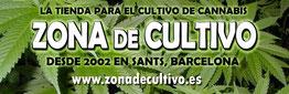 zona de cultivo grow shop Barcelona big seeds