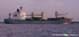 Mehrzweckcontainerschiff ANDINET, Elbe 1985