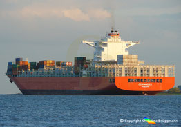 Containerschiff CCNI ANDES