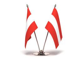 erfolgswelle: Textagentur Österreich