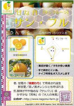 サン・フル。【甘夏】 紹介pop 和×夢 nagomu farm