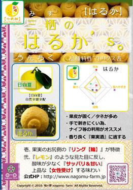 三栖のはるか's【はるか】紹介POP 和×夢 nagomu farm