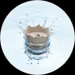 Crown Juwel Edelsteinwasser für Hund und Katze
