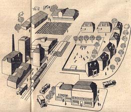 Die Vollgenossenschaft der Kzukunft umfasst neben der Warenvermittlung die industrielle Produktion, die Urproduktion und den Wohnbedarf