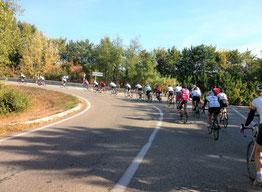 Peloton groupé au rond-point de Pont-St-Esprit