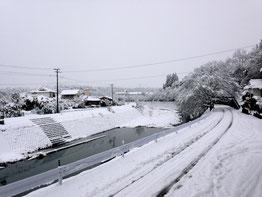 今年の2014年2月に降った大雪の風景です。三重町でも数年ぶりの大雪でした(^^;)