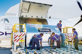 Loading of a Unilode container on board an ATR freighter operated by Hawaiian – photo: Unilode