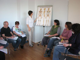 Anatomie und Supervision