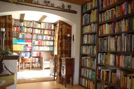 Fachbibliothek: Blick auf Medizin und Theologie (im Hintergrund)