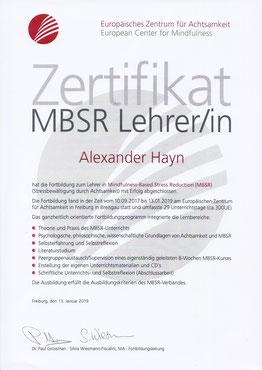Zertifikat MBSR Lehrer Alexander Hayn