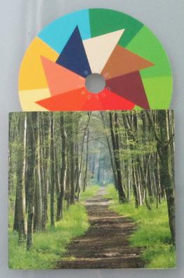 Mini-Farb-Karte für den Frühlingstyp, Abbildung in Orginalgröße