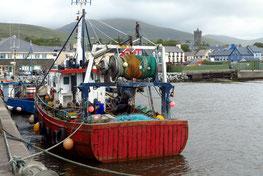 Fischkutter im Hafen von Dingle