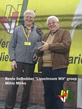 Mirko Mihic Sieger Farbkanarienschau