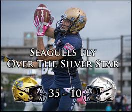 Seagulls (35) - (10) Silver Star