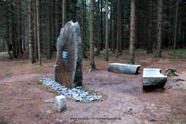 Der Denkstein am Nordkap / Hohwald - Zustand 18.11.2013
