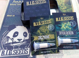 sorteo semillas de marihuana facebook big seeds 2015