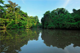 Tortuguero Vacation plan from Arenal