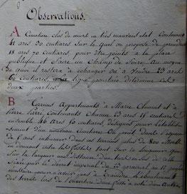 Extraits du  plan exécuté par l'inspecteur de la voirie de l'arrondissement du Blanc, le 27 juin 1810, Archives municipales, Prissac.