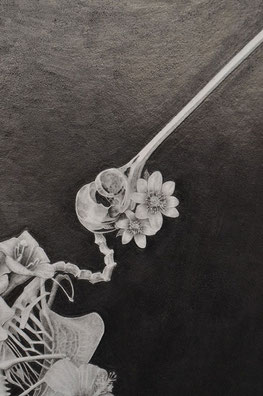 Detail, Habitable Cadavers series / Graphite on paper.