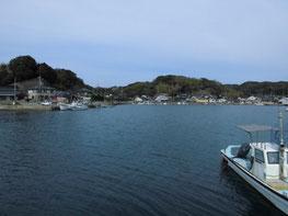近所の釣り場の写真