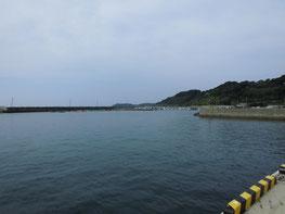 アオリイカ 釣り場の写真1