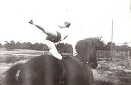Voltigiertraining mit Alm im Jahre 1978