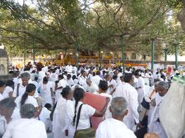 スリランカの仏教徒
