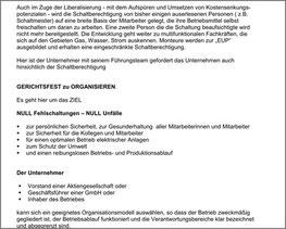 Schaltberechtigung - Unternehmerverantwortung - Florian Pusch - Peter Pusch - Publikation - Fachartikel - Rechtssicherheit