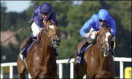 Irish Champion Stakes: Fantastic Light schlägt Galileo