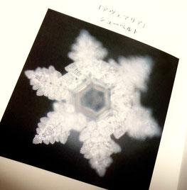 江本先生の本「水は音楽を聴いている」から。アヴェ・マリアの音の結晶。
