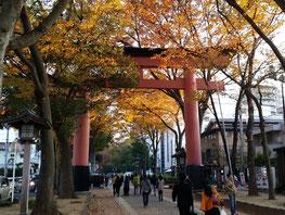 Ni-no-Torii (The 2nd Shrine Gate)