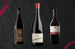 Internationale Blauburgundertage - Montan - Neumarkt-Giornate e Serate del Pinot Nero - Montagna - Egna Gourmet Südtirol