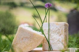 """3. Ahrntaler Graukäsetage - Giornate del """"Graukäse"""" in Valle Aurina - Gourmet Südtirol"""