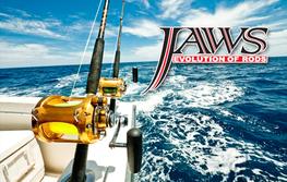 Jaws Rod Blanks Introduction