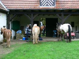 Wanderreitergruppe am Alten Forstamt im Teutoburger Wald