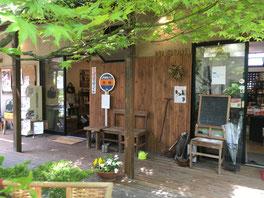 撮影に使用したお店のお庭
