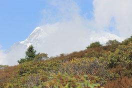 Trekking Ganesh Himal - Trek langtang  - helambu