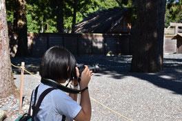 映像写真専攻の撮影実習