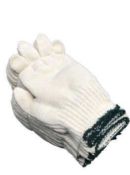 商品番号037 日本製 使い捨て手袋の写真