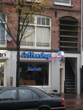 Coffeeshop Weedshop Blue Lagoon Amsterdam