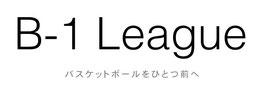 b-1 league ball4life basketball