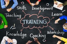 Trainer Training Ontwikkelen Leren als Team kennis en vaardigheden